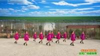 陕西华州莲花寺社区舞蹈队广场舞 【我还在草原等你】 表演 团队版