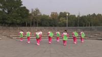 郑州七彩阳光舞蹈队广场舞《第七套秧歌》原创舞蹈 表演 团队版