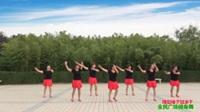 陕西华州杏林阳光舞蹈队广场舞  撸起袖子加油干  表演 团队版