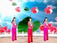 龙海追梦广场舞《玫瑰恋情》编舞简画 抒情舞 正背面演示