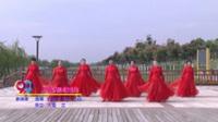 宿州漫舞飞扬队广场舞 天鹅湖圆舞曲  表演 团队版