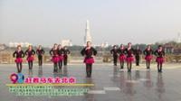 河南省周口市谷静舞蹈工作室广场舞  赶着马车去北京 表演 团队版