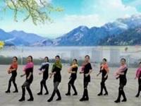 玉琴飞扬广场舞《一路向北》编舞风琴广场舞 团队版演示