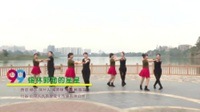 中河街姐妹健身队广场舞 锡林郭勒的星星 表演 团队版