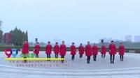双鹤之美舞蹈队 中国梦 表演 团队版