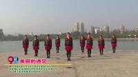 河南省焦作市人民广场快乐健身队8队广场舞  美丽的遇见 表演 团队版