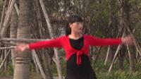 宁陵县阳驿东村健身队广场舞 火火的姑娘 表演 团队版