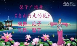 抚州馨子广场舞《自由行走的花》编舞応子 正背面演示