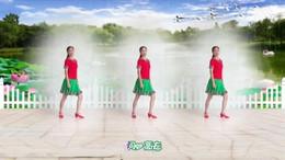 世纪芳草广场舞《大雨还在下》编舞兴梅 正背面演示