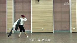 李琦广场舞《梅花三弄》原创古典身韵水袖舞 正背面演示