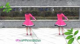 夜空广场舞《康巴情》原创舞蹈 正背面演示