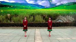 风潇俪影广场舞《吉祥如意的日子》编舞王梅 正背面演示