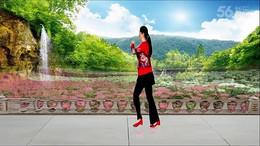 河北七彩之光舞蹈队《欢喜就好》原创步子舞32步 正背面演示