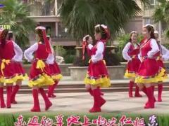 杨丽萍广场舞《唐古拉风暴》原创藏族圈圈舞 附正背面口令分解教学演示