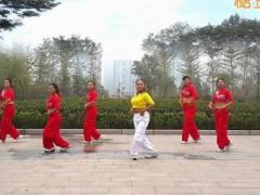 舞动旋律2007健身队《我的新娘》原创健身操 附正背面口令分解教学演示