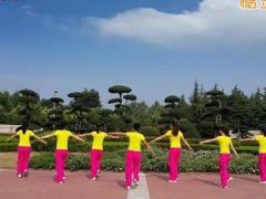 舞动旋律2007广场舞《红歌串烧-创意四连跳》原创舞蹈 附正背面口令分解教学演示