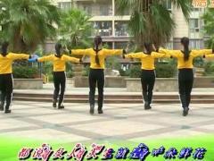 杨丽萍广场舞《老婆最大》原创舞蹈 附正背面口令分解教学演示