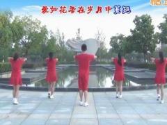 楠楠广场舞《预约》原创舞蹈 附正背面口令分解教学演示