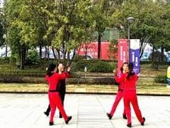 漓江飞舞广场舞《纯真的梦想》活力