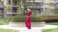 杨丽萍广场舞《千里祝平安》原创舞蹈 团队演示 附背面口令分解教学