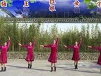 安庆红娘子广场舞《蓝色天梦》原创舞蹈 团队正背面演示