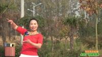 陕西华州柳枝姐妹花舞蹈队广场舞《我和我的祖国》原创舞蹈 表演 团队版