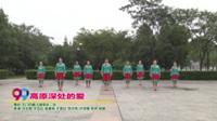 天门市戴儿健身队二队广场舞  高原深处的爱 表演 团队版