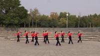 飘舞广场舞蹈队广场舞 我想你的时候 表演 团队版