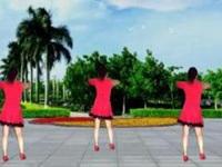 轻舞飞扬广场舞《傻女人》原创舞蹈 附正背面口令分解动作教学演示