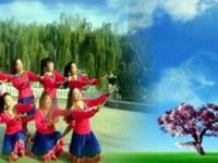 明星广场舞《蓝色天梦》编舞雨夜  团队正背面演示