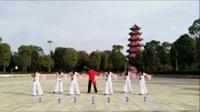 中国男子明星20强沈华炳舞蹈队广场舞《胡琴说》原创舞蹈 正背表演 团队版