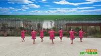 陕西华州柳枝张桥舞蹈队广场舞《草原的夏天》原创舞蹈 团队表演