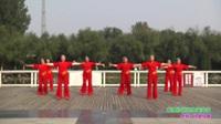 郑州市红梅舞蹈队广场舞 爱我你就把我来追求 表演 团队版