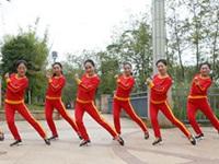 杨丽萍广场舞《一辈子这样爱你》原创现代舞 附正背面口令分解动作教学演示
