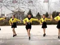 大荔凤玲广场舞《飘雪的季节更想你》原创舞蹈 正背面教学演示