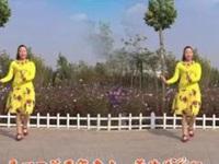 巨鹿霓裳依依广场舞《梦中的蝴蝶》原创舞蹈 附正背表演口令分解动作分教学