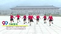 焦作市姐妹花舞蹈队 万树繁花 表演 团队版