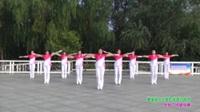 郑州市纷飞快乐舞步健身队四队广场舞 今生爱的就是你 表演 团队版