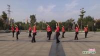 河南省扶沟县红豆广场舞健身队广场舞  北江美 表演 团队版