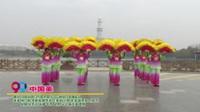 河南省周口市商水县化河宁楼俏夕阳舞蹈队广场舞  中国美 表演 团队版