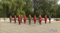 郑州市玫瑰金舞蹈8队广场舞 我要去西藏 表演 团队版