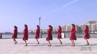 河南驻马店泌阳贾楼霞光广场舞队 你的美让我醉  表演 团队版