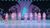 河北廊坊星月舞蹈队广场舞 谁说梅花没有泪 表演 团队版