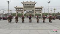 河南省鹿邑县巧真水兵舞蹈队广场舞  想西藏 表演 团队版