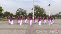 河南省周口市郸城县红梅舞蹈队广场舞  梦已残 表演 团队版
