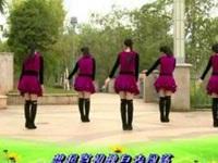 杨丽萍广场舞《今夜的我又要去何方》原创韵律32步入门舞 口令分解动作教学