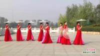 河南省项城市心连心舞蹈队广场舞  水乡新娘 表演 团队版