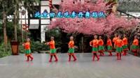 北京回龙观李丹舞蹈队广场舞  梦回草原  表演 团队版