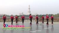 河南省周口市腾龙名都辅导站广场舞  前世今生的轮回 表演 团队版