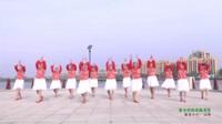 河南驻马店泌阳羽化广场舞队 家乡的姑娘真漂亮 表演 团队版